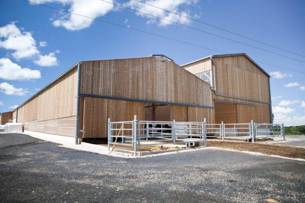 Bâtiment d'élevage bovin à Troisvaux